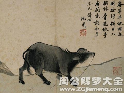 古人对于梦见牛的诠释3.png