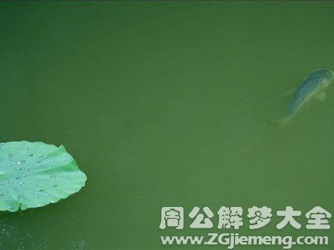 性梦之性象征--轴、鱼和雨.jpg