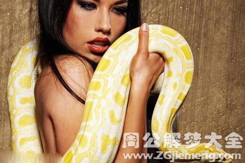 一条大蟒蛇