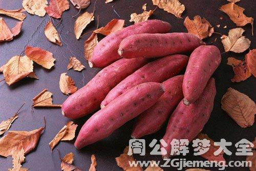 梦见红薯、地瓜