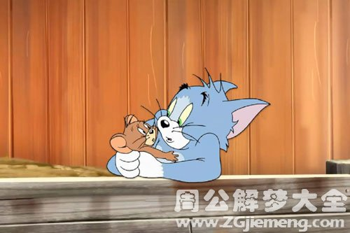 梦见猫和老鼠