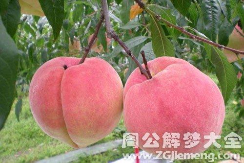 桃子、吃桃