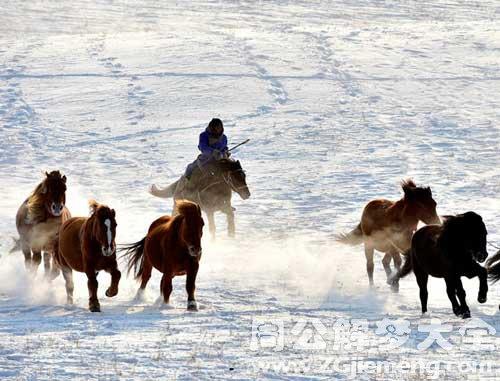 梦见带领马群狂奔