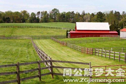 梦见草场围栏