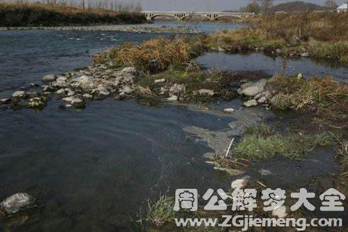 河水浑浊很大