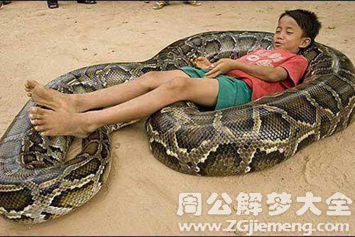 梦见蛇吞小孩