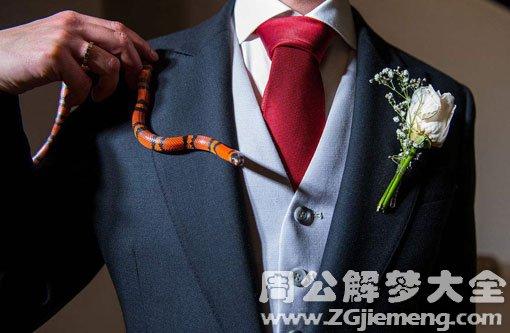 梦见和蛇结婚