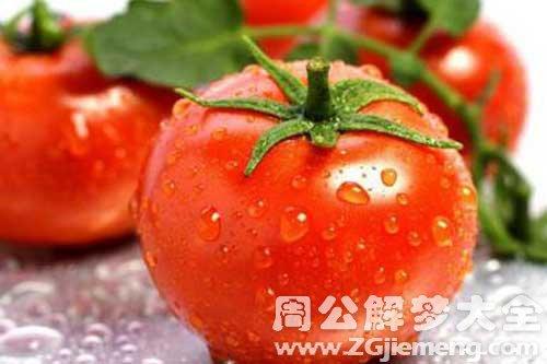 梦见洗西红柿