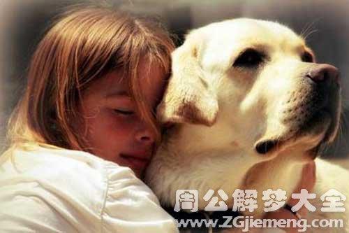 梦见狗咬自己的小孩