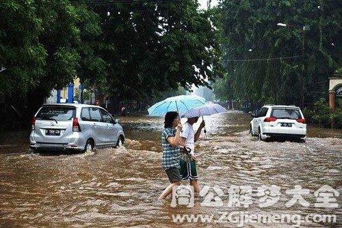 梦见大雨洪水