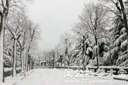 梦见下很厚的雪