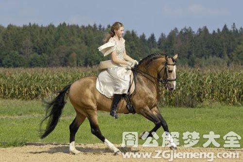 与别人骑马奔跑